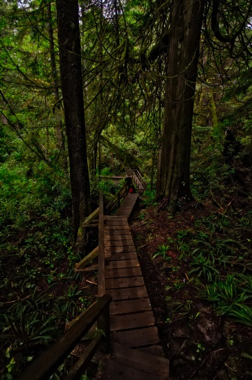 Great boardwalk trail with an abundance of stairs