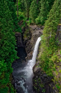 The falls tumble 60 meters into Campbell River