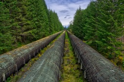 This HUGE pipeline carries water from John Hart Lake to the BC Hydro power generation plant. Each of these 3 Penstocks are 12' in diameter! I have to say, I would hate to see oil being transported through this pipeline in this eco-sensitive zone.