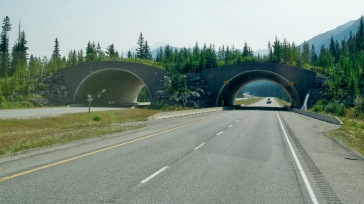 Trans Canada Highway coming into Banff, Alberta