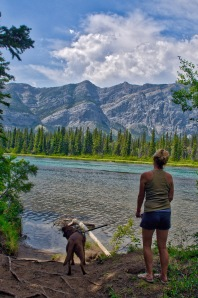 Bow River hiking trail within the Bow Valley Provincial Park